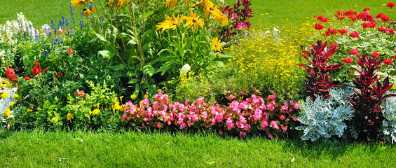 Summer flowerbed and green lawn. Wide photo.