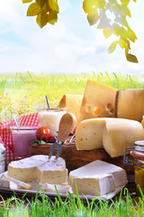 Aluminium Prints Dairy products Assortment of dairy products on grass in the meadow vertical