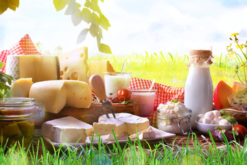 Photo sur cadre textile Produit laitier Assortment of dairy products on grass in the meadow