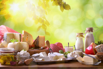 Photo sur Toile Produit laitier Large assortment of artisanal dairy products in nature