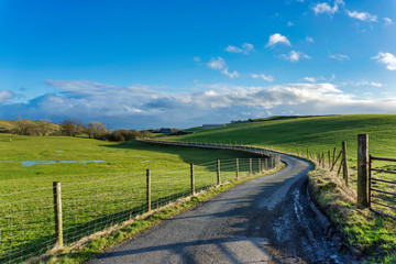 A winding country lane passing through green fields.