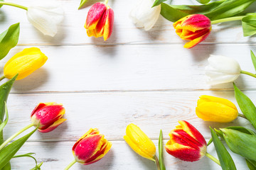 Tulips on white wooden table. Flower background.