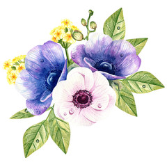 watercolor bouquet of anemones on the white background