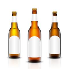 Beer bottle vector set.