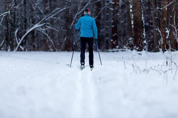 Image from back of skier athlete in forest at winter