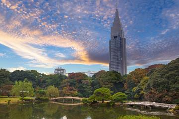 Autumn in the Shinjuku Park, Tokyo, Japan