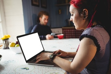 Hipster woman using laptop at home