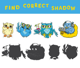 Find the correct shadow educational game for kids with owls. Vector colorful activity.