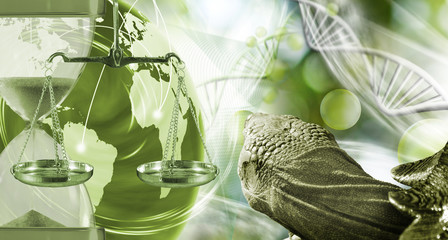 abstract image of the globe, weights,hourglass and turtle on a blurred background