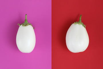 white eggplants isolated on red and fuchsia, background