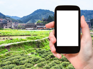 tourist photographs tea and rice fields in China