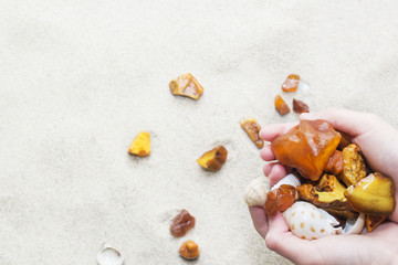 pieces of amber and seashells in female hands on a background of sand.
