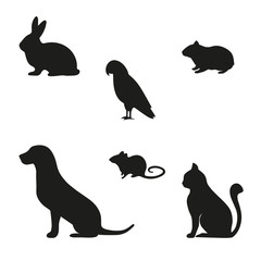 silhouette of a mouse rabbit mouse dog and a parrot on a white background