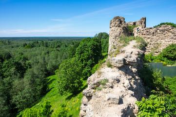Ruins of Koporye fortress