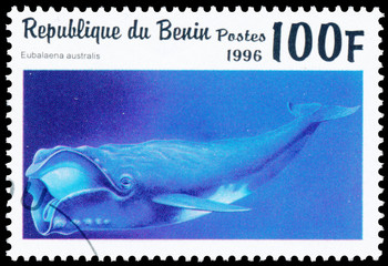 Stamp printed in Benin showing Southern Right Whale