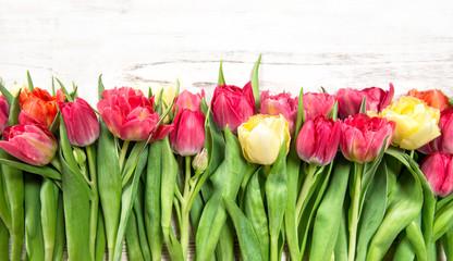Fresh spring tulip flowers bright wooden background