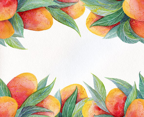 Colorful background with watercolor fruits mango frame. Watercolor mango fruit and leaves closeup isolated on white background.