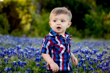 Adorable little boy in a field of bluebonnets in Central Texas