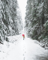 Walking the snow covered trail with a red umbrella