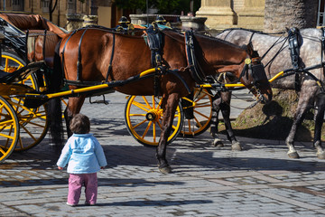 Baby and horse in Sevilla