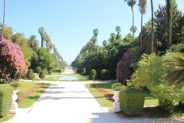 Jardin botanique d'Alger, Algérie