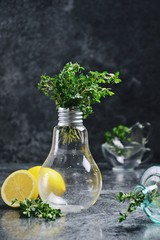 Lemon Thyme on the dark background