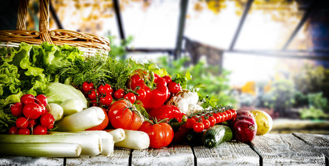 fresh vegetables in the spring from the winter glass garden bio