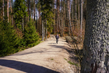 tilt shift orientation rally in the forest (bicycle)