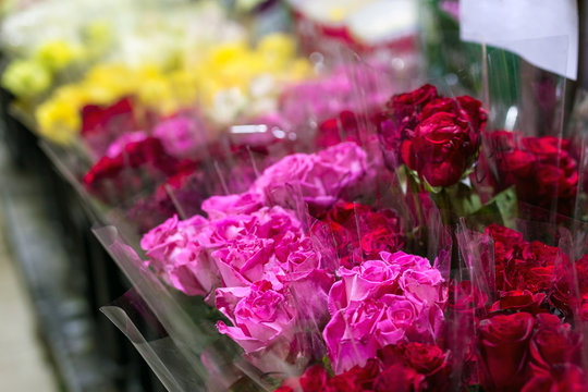 Beautiful fresh red roses at flowermarket. Wholesale flower shop. Retail and gross cut flower store concept