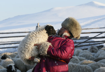 Head of the nomad camp of Tanzurun Darisyu works near Kyzyl town in the Republic of Tuva