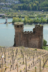 Ruine Ehrenfels und Mäuseturm