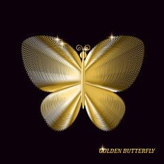Gold butterfly on black background. Vector illustration.