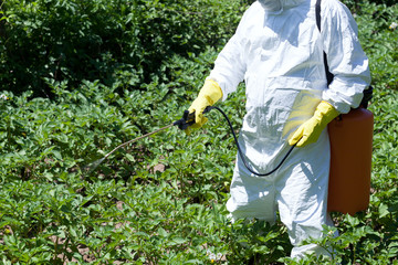 Pesticide spraying. Non-organic vegetables. Pollution.