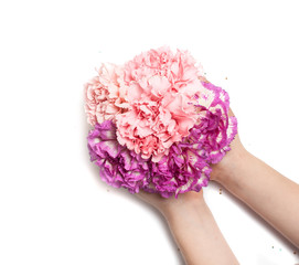 bouquet of pink flowers in the hands of a child