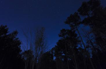 North Carolina sky