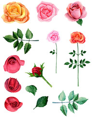 Watercolor red roses clipart. Pink flowers clip art