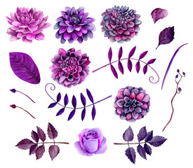 Watercolor purple flowers clipart. Floral clip art