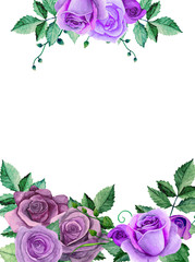Watercolor roses. Purple flowers bouquet. Greeting card design template