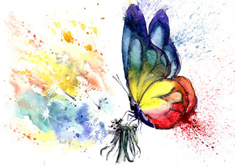 watercolor drawing of a butterfly on a dandelion