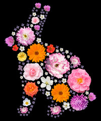 Easter bunny silhouette with floral pattern. Collage of flowers isolated.