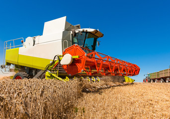 Combine harvester at the wheat harvest - 300030168