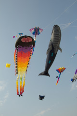 Cha-am International, Kite Festival in Prachuap Khiri Khan Province of Thailand.