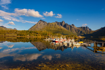 Wall Mural - Fishing boats and yachts on Lofoten islands in Norway