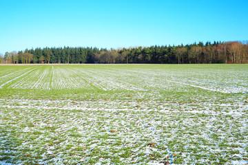 Winterly countryside near Warendorf in Muensterland, Westphalia, Germany