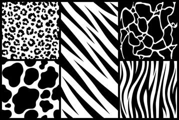 Print set texture animal skin pattern background african tiger zebra giraffe cheetah cow jaguar