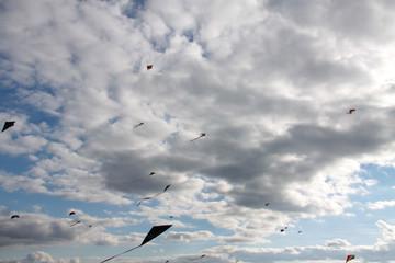 Viele Flugdrachen am Himmel