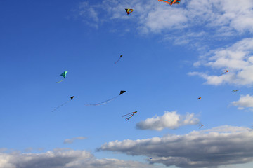 fly some kites