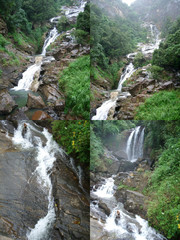 Waterfalls in the mountains in the rainforest collage of four photos
