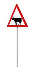 Deutsches Verkehrszeichen: Viehtrieb, auf weiß isoliert, 3d render