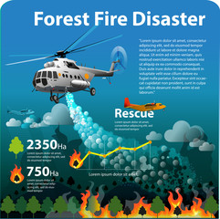 Vector illustration, info graphic forest fire disaster